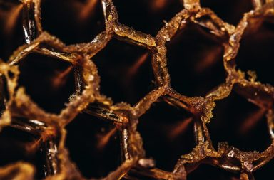 An image of honeycomb.